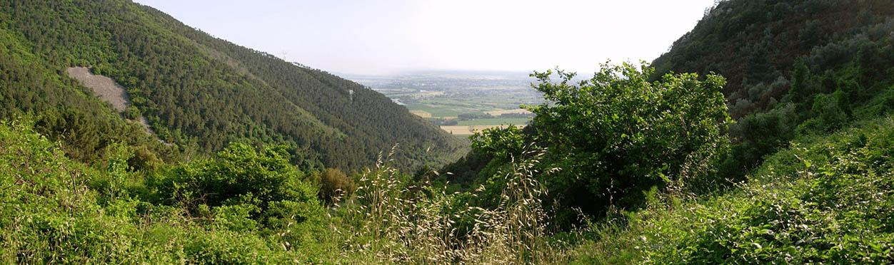 panorama della valle delle fonti dal Mirteto